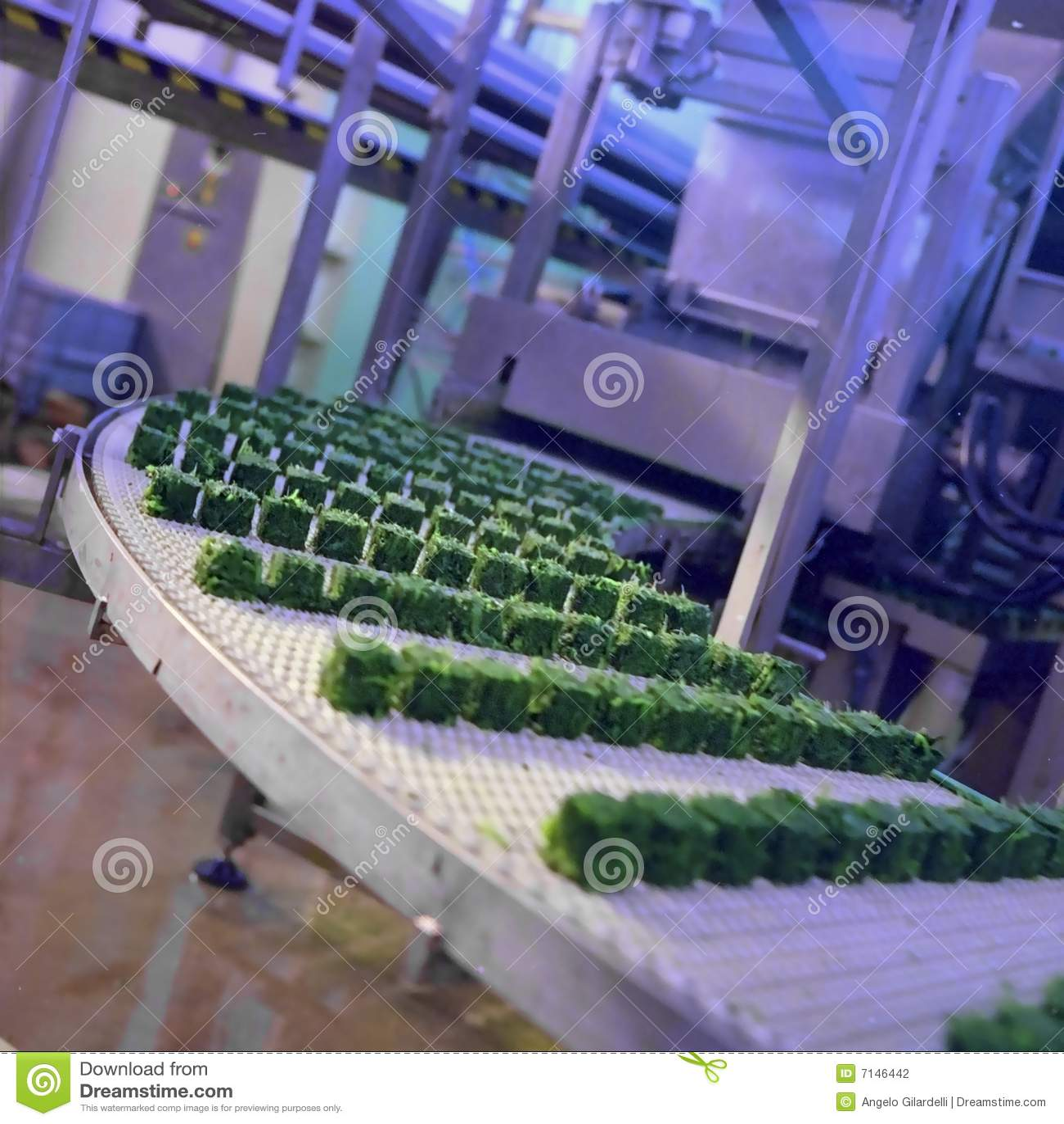 De industrie van het voedsel