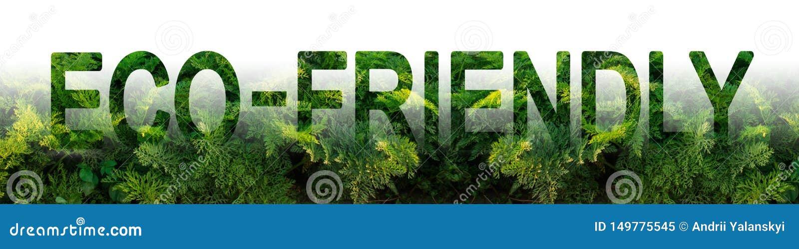 De inschrijving Milieuvriendelijk op de achtergrond van een wortelaanplanting Milieuvriendelijke oogst, kwaliteitscontrole Jongel