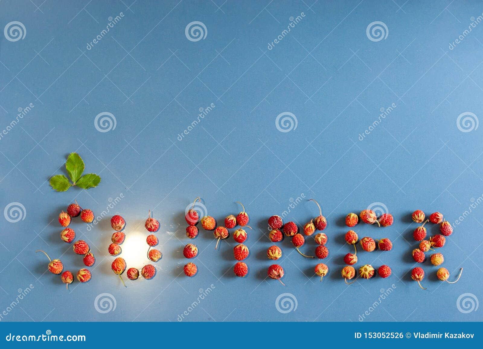 De inschrijvingszomer voerde met aardbeien op een keramische tegel met een stoftextuur Een blad boven de brief C Licht van een li