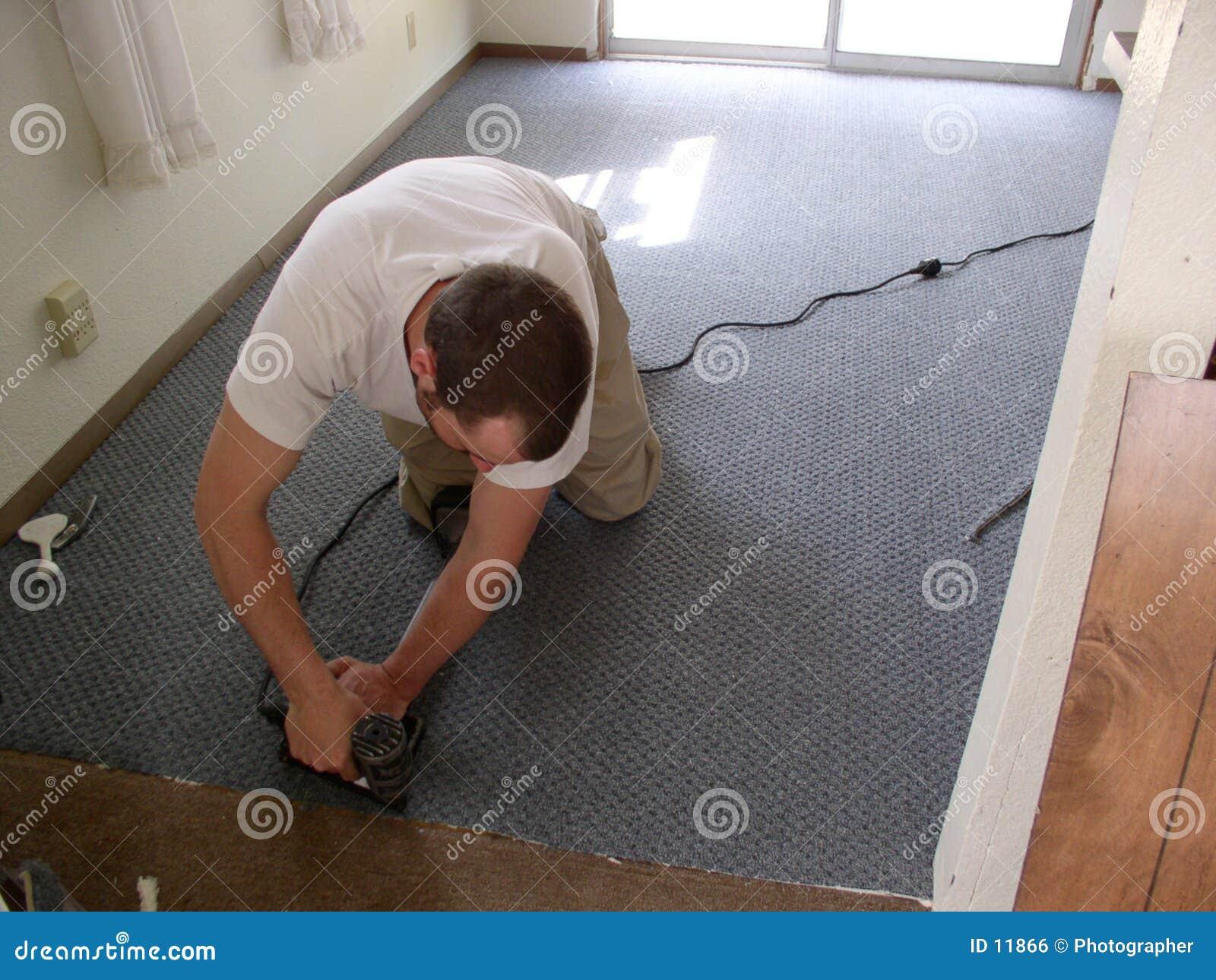De installateur van het tapijt