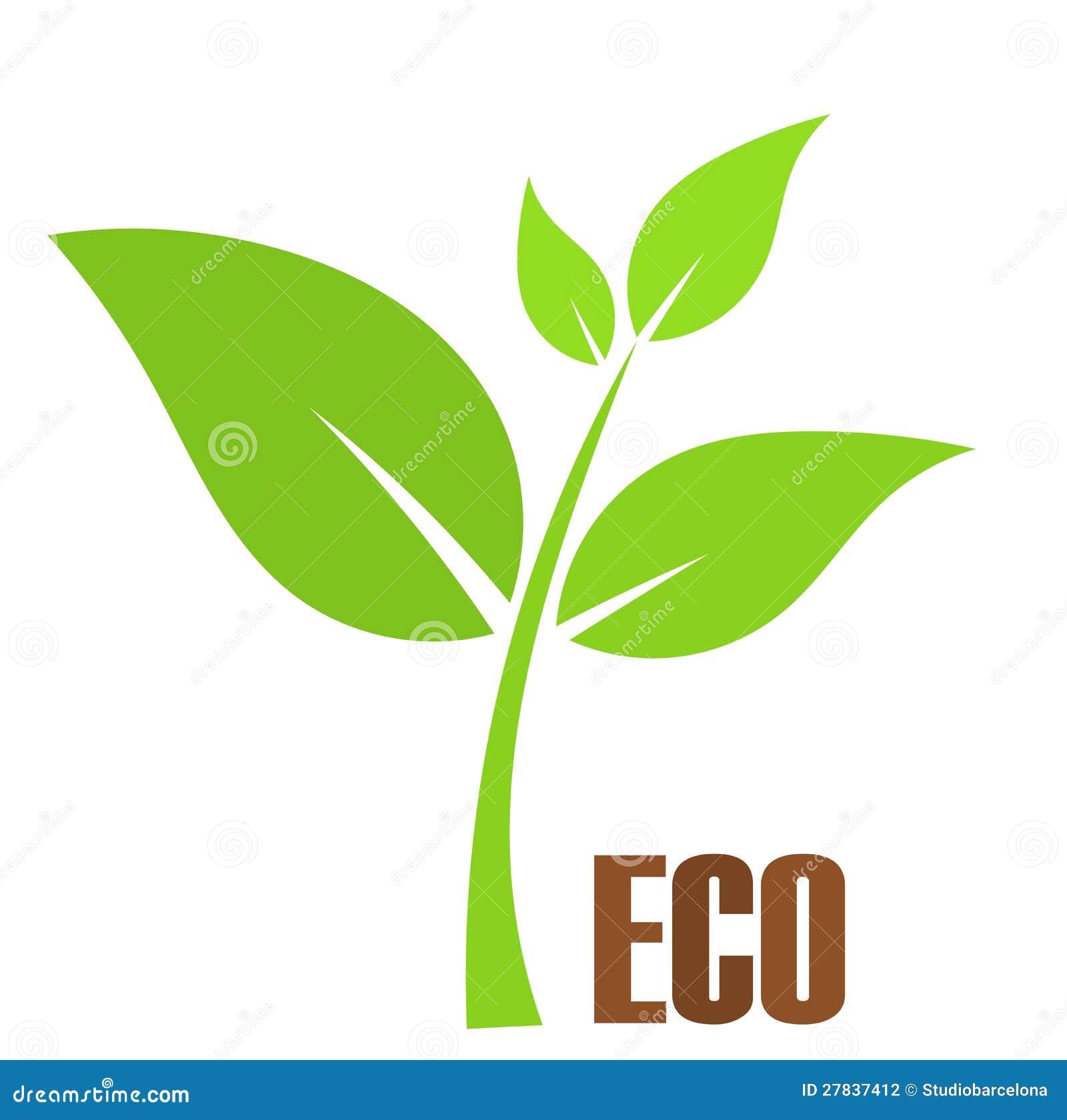 De installatie van Eco