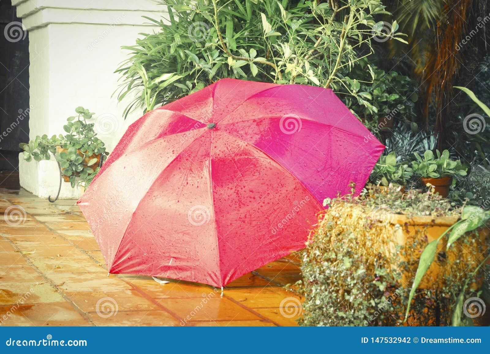 De intense kleur van de paraplu voegt vreugde aan de regen toe