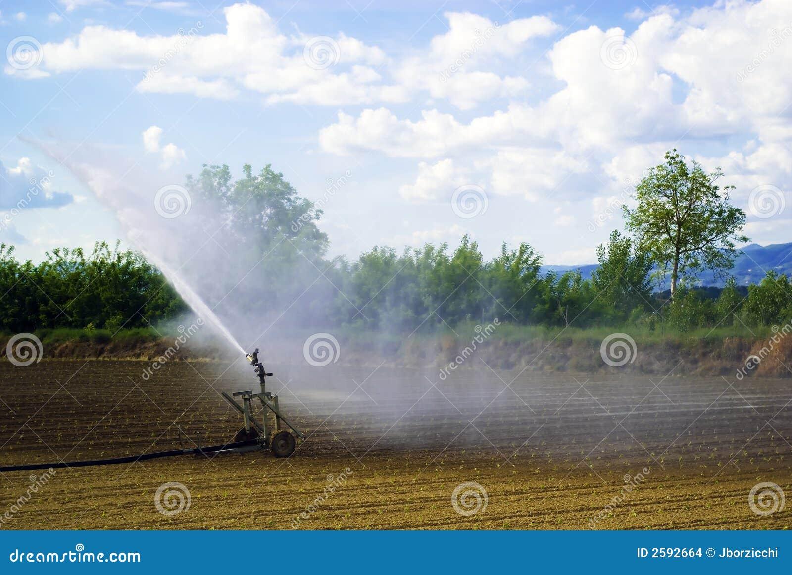 De irrigatie van het gebied, Italië