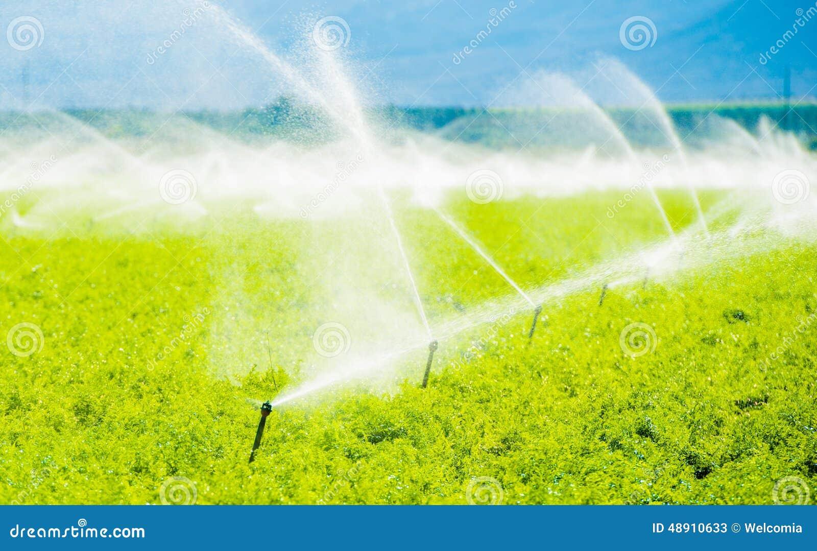 De Irrigatie van het landbouwbedrijfgebied