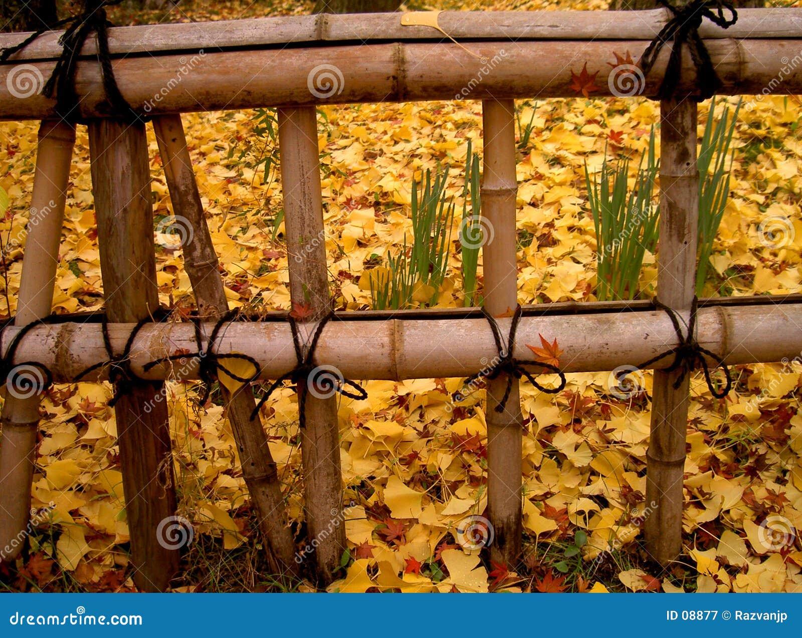 De Japanse omheining van de herfst