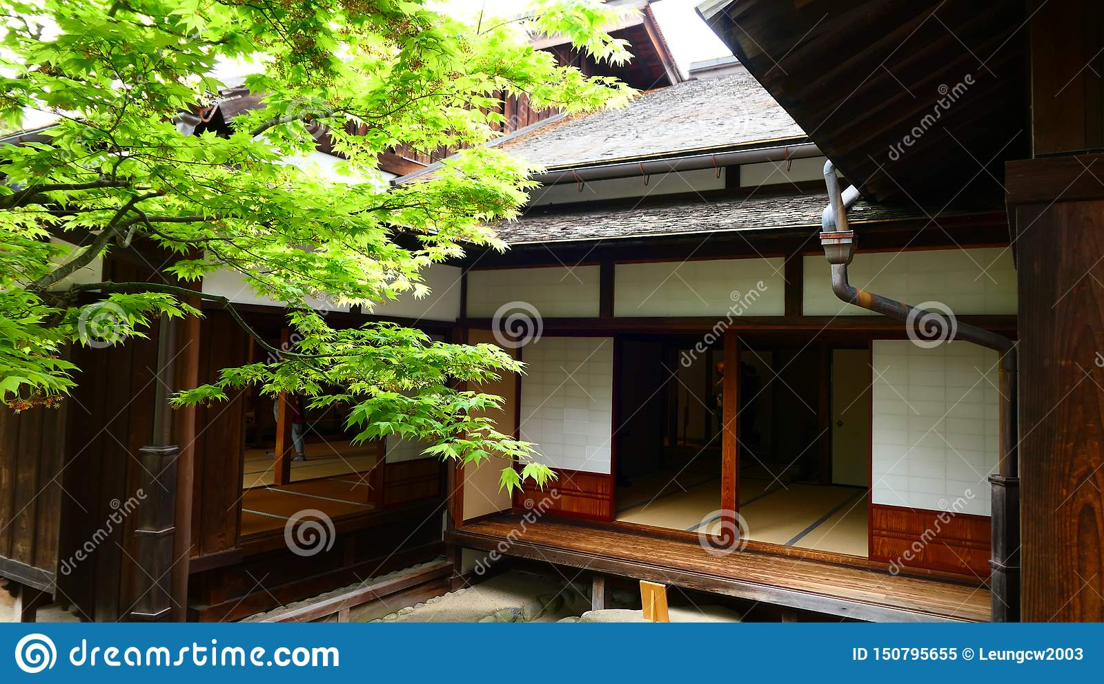 De Japanse oude houten bouw met esdoornboom in de tuin