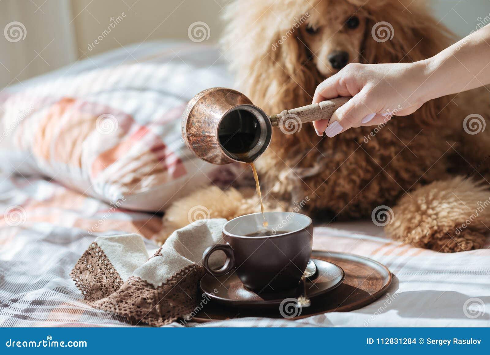 De jonge vrouw rust met een hond op het bed thuis en gietende koffie in een kop