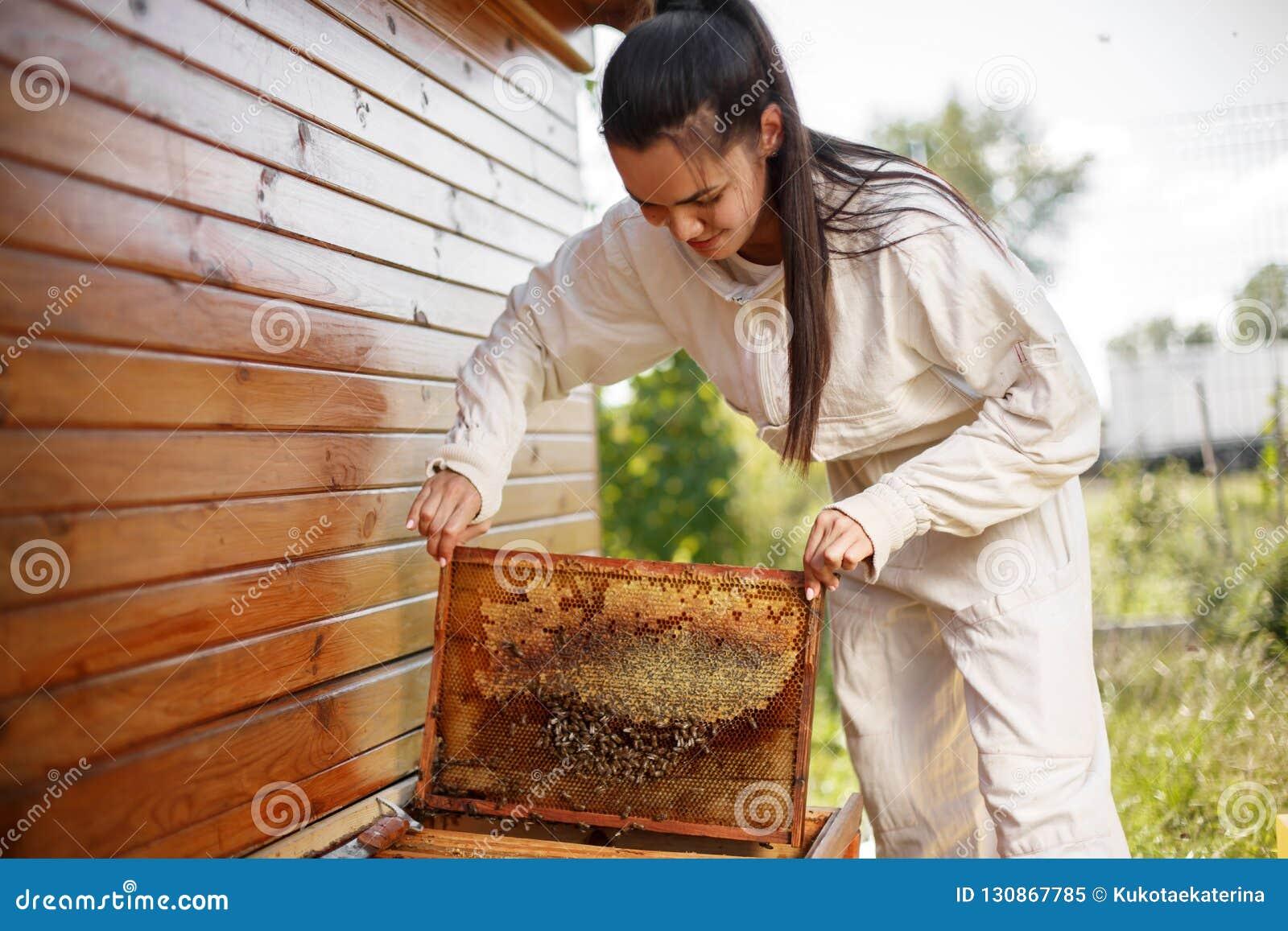 De jonge vrouwelijke imker trekt van de bijenkorf een houten kader met honingraat terug Verzamel honing Imkerijconcept