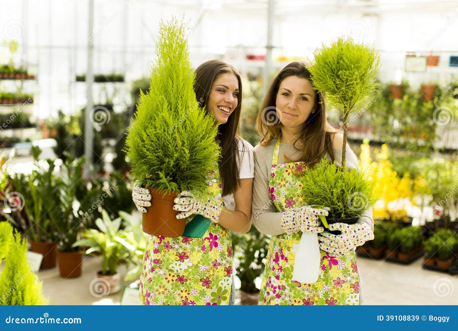 De jonge vrouwen in bloem tuinieren