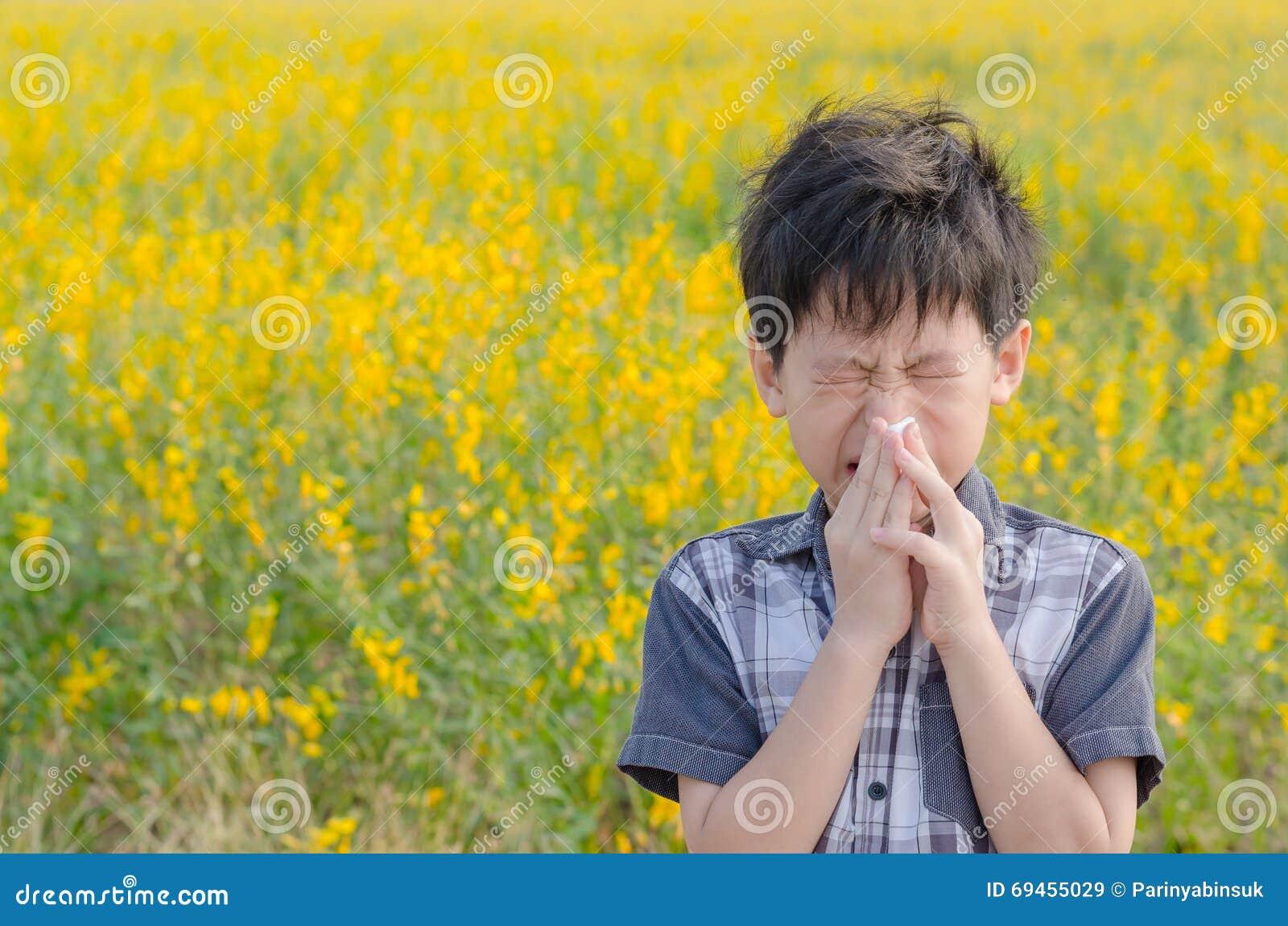 De jongen heeft allergieën van bloemstuifmeel