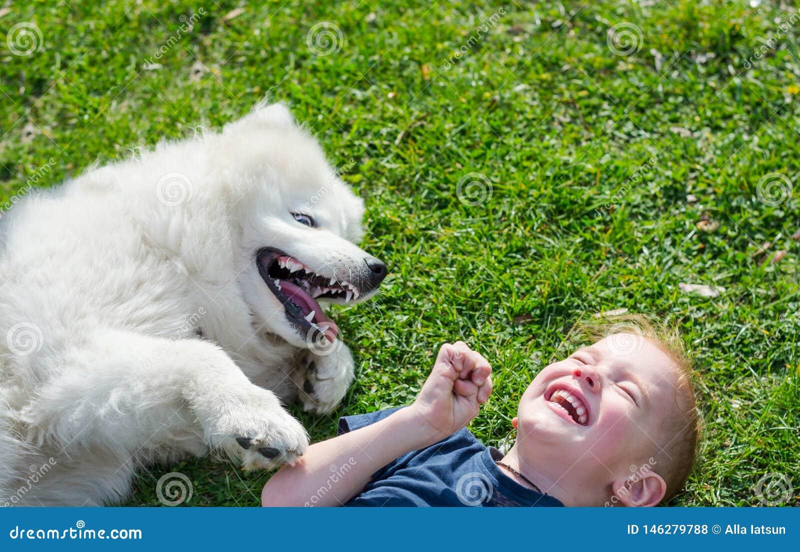 De jongen lacht liggend met een witte hond in het park op het gras in de lente