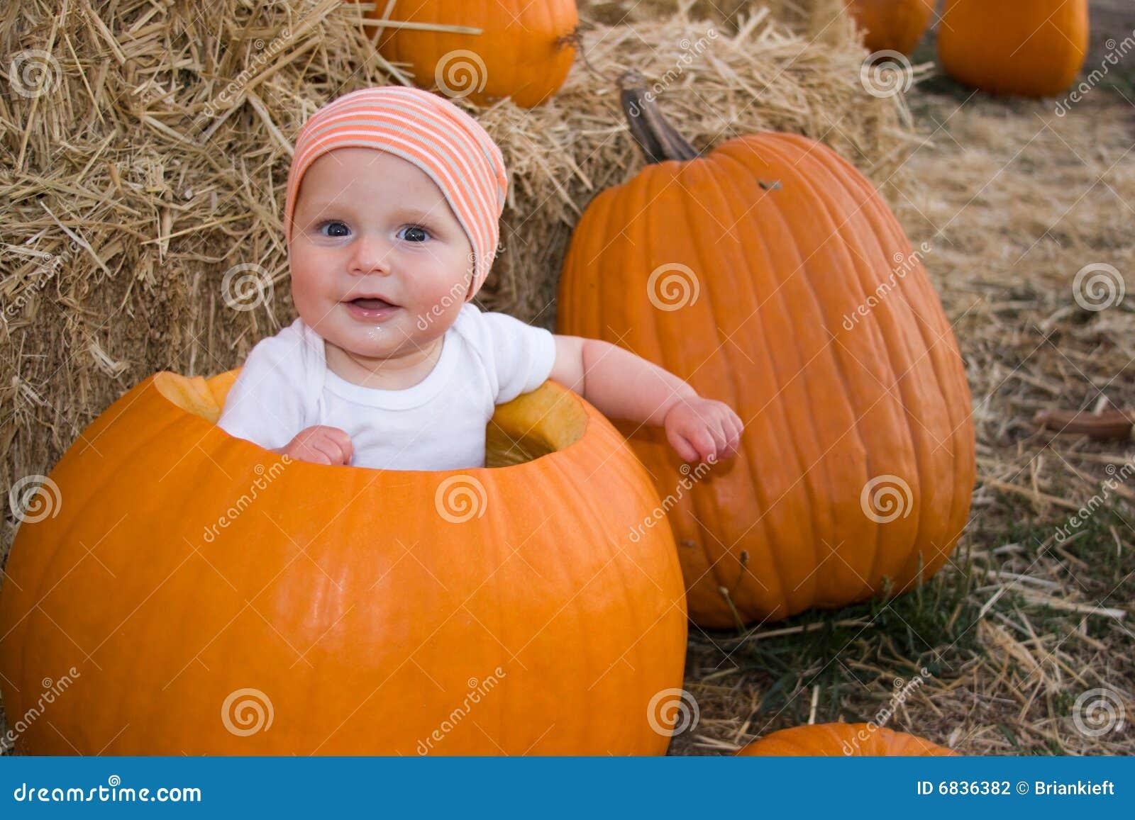 De jongen van de baby die in pompoen wordt gezeten stock foto afbeelding 6836382 - De kamer van de jongen ...