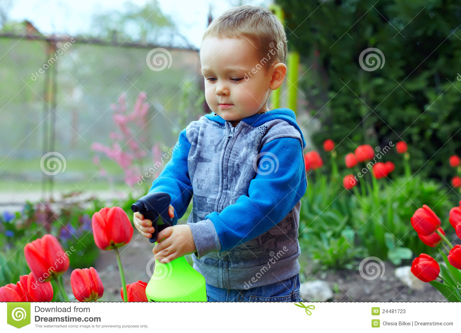 De jongen van de baby het irrigeren bloemen in kleurrijke tuin stock foto 39 s beeld 24481723 - Turquoise ruimte van de jongen ...