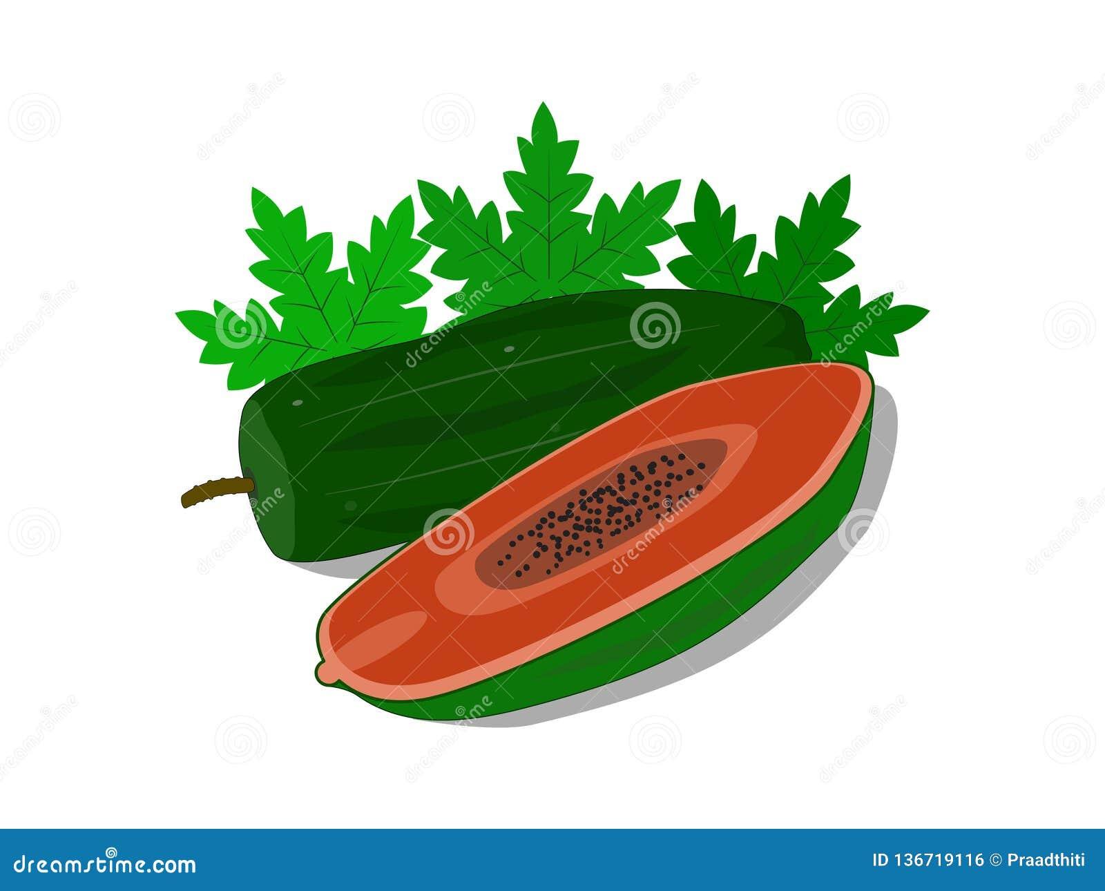De köttpapayafrukterna och sidorna