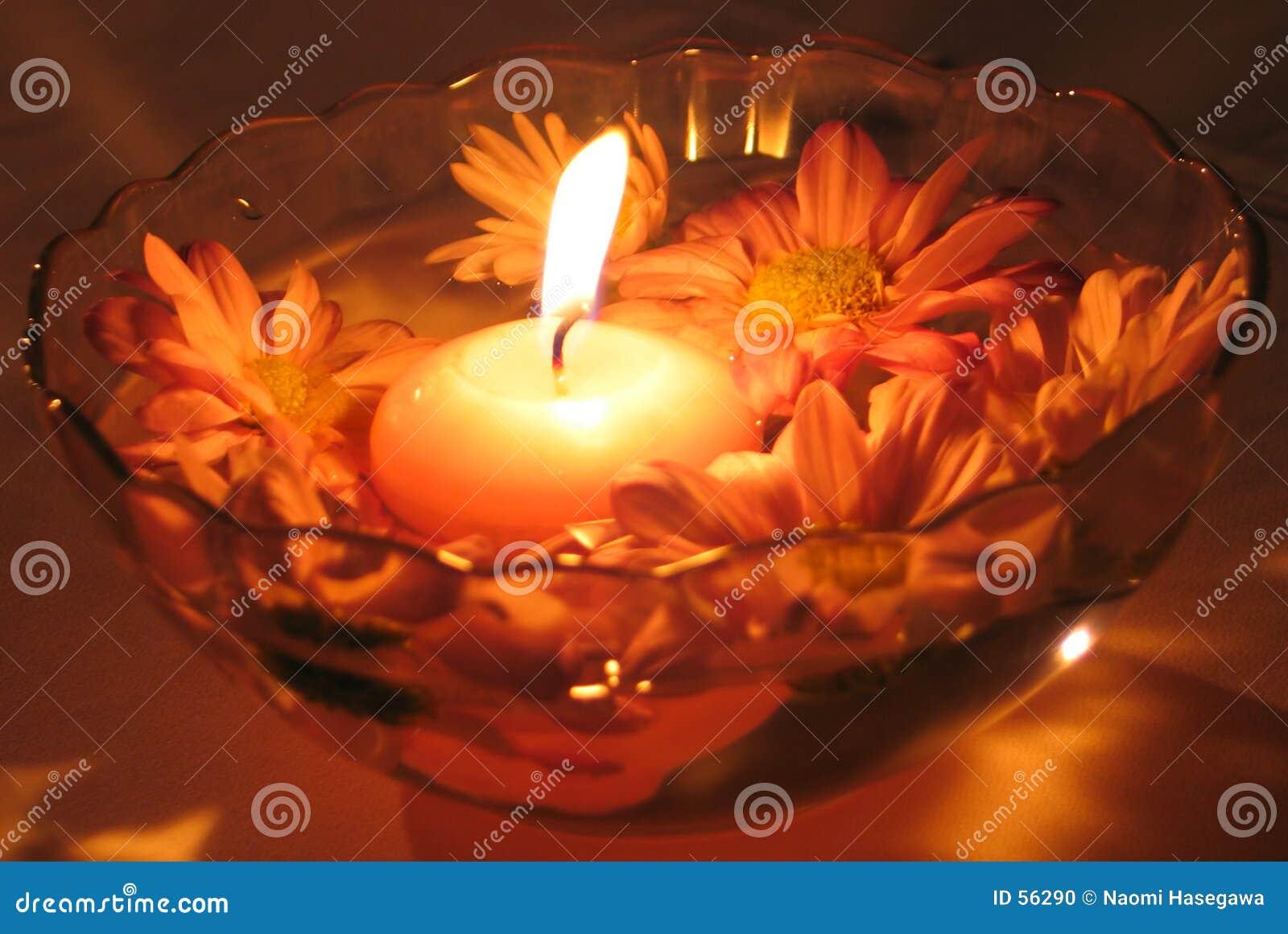 De Kaarsen van de bloem