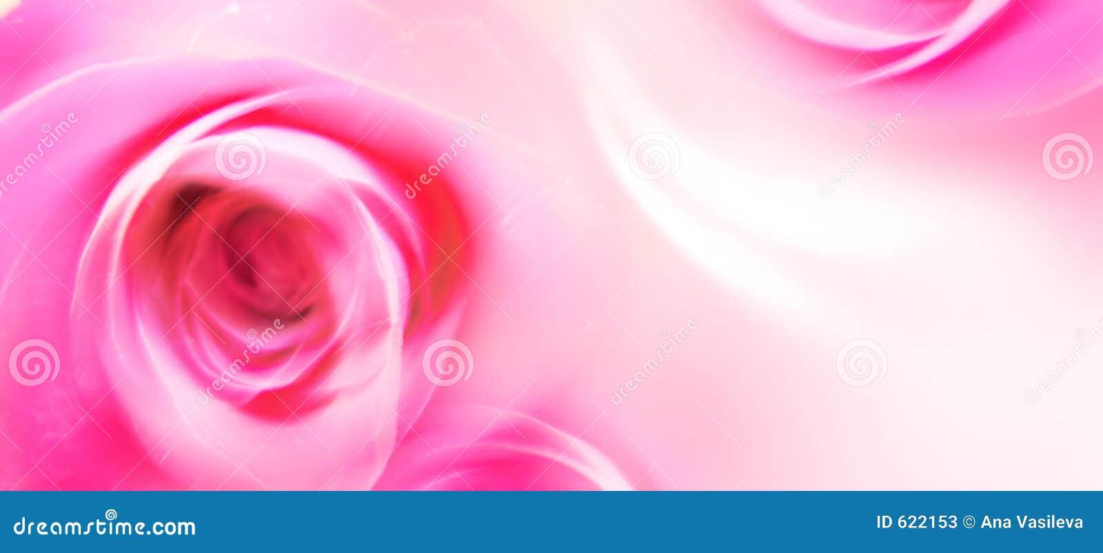 De Kaart van de Groet van de liefde - St Valentijnskaart - Bloemen - Rozen