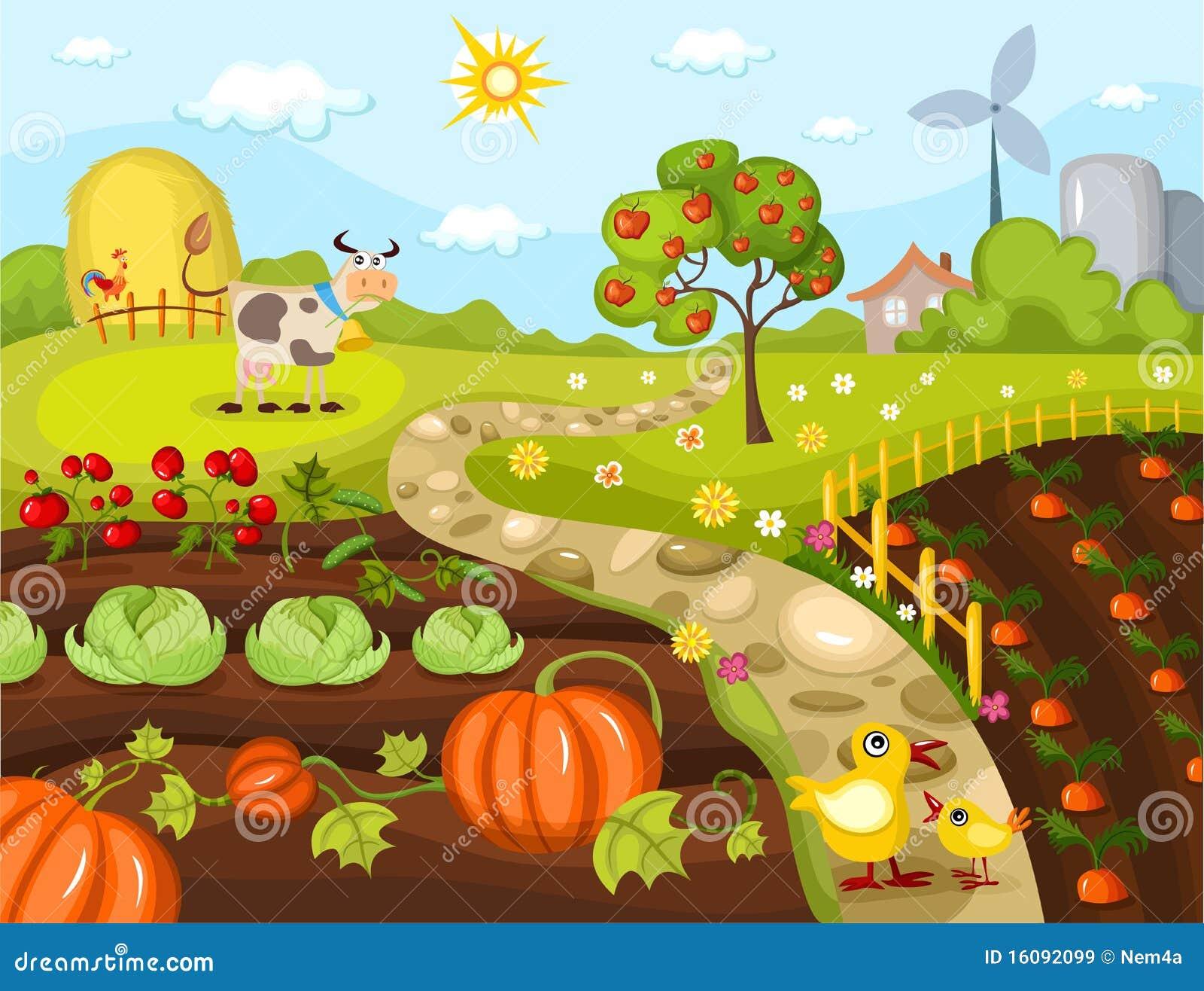 De kaart van de oogst
