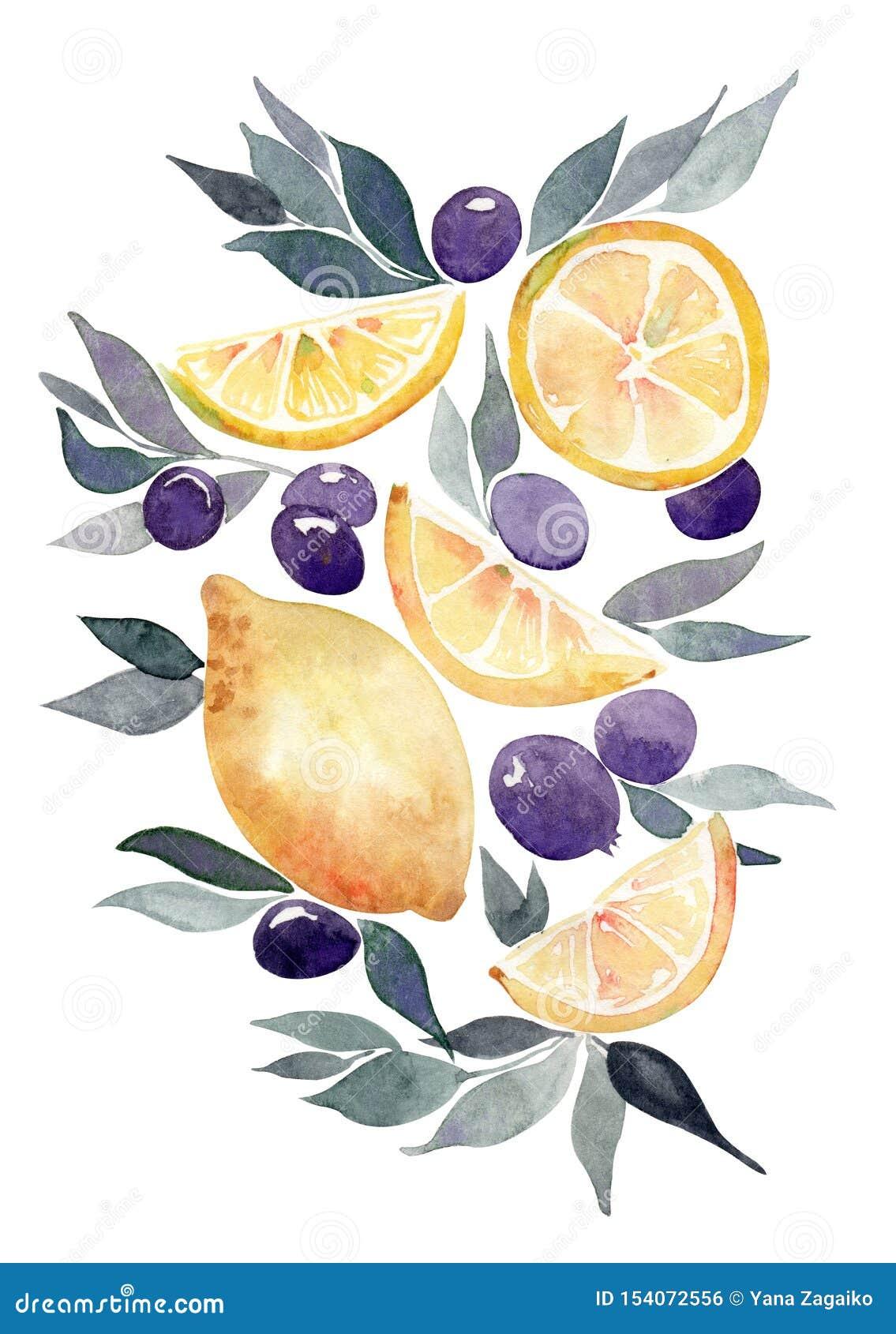 De kaart van de waterverfgift met citroenen, bladeren en sommige beries Ge?soleerd op een witte achtergrond