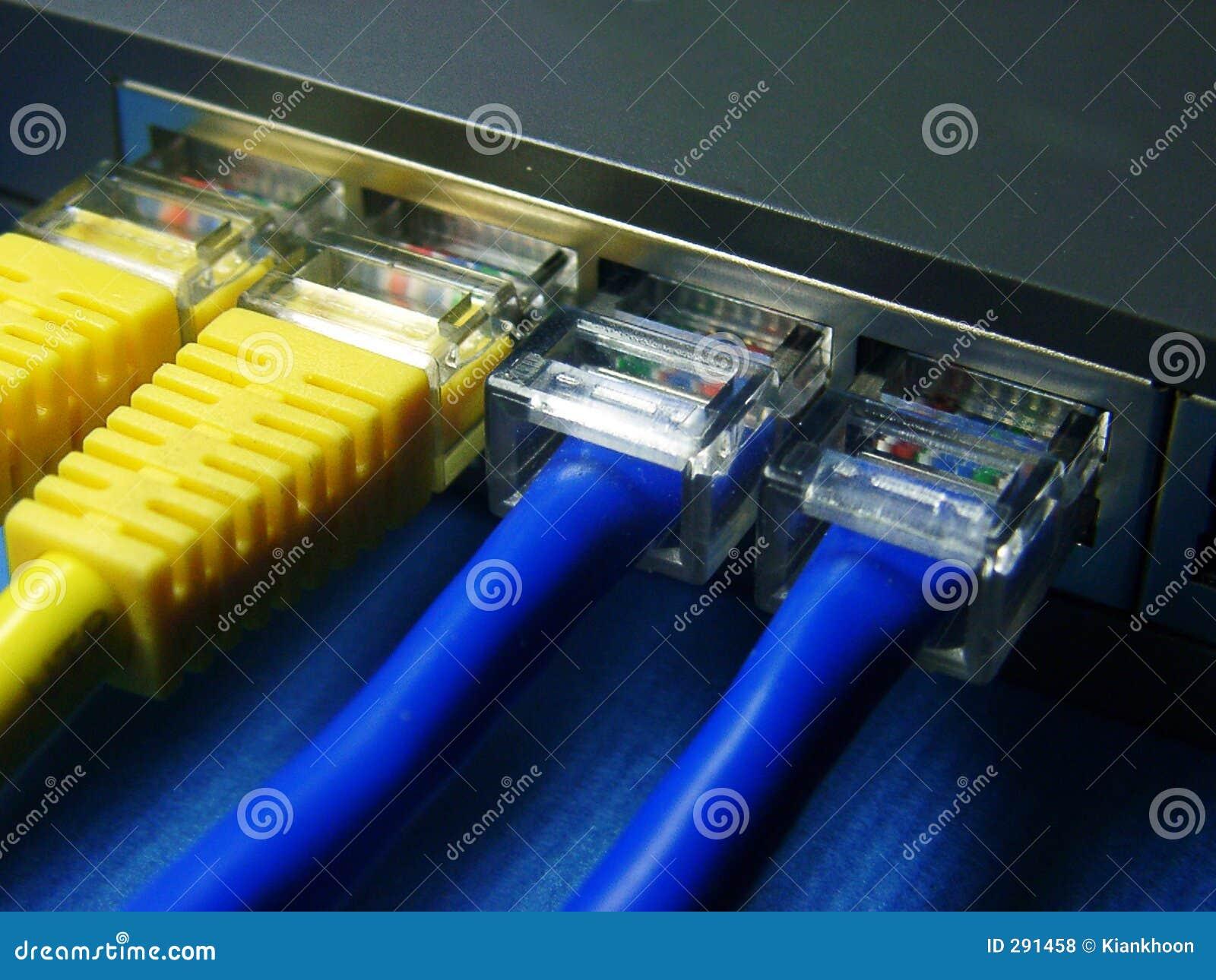 De kabel & de hub van het netwerk.