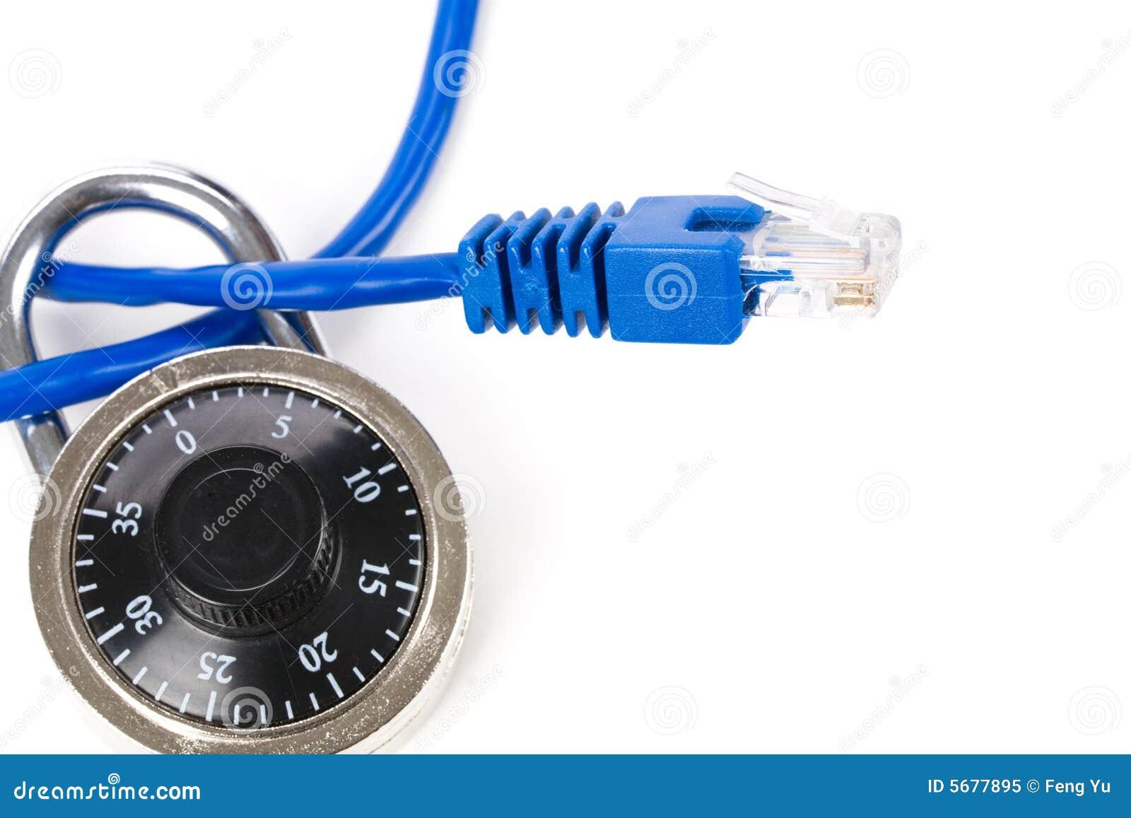 De kabel van het slot en van het netwerk