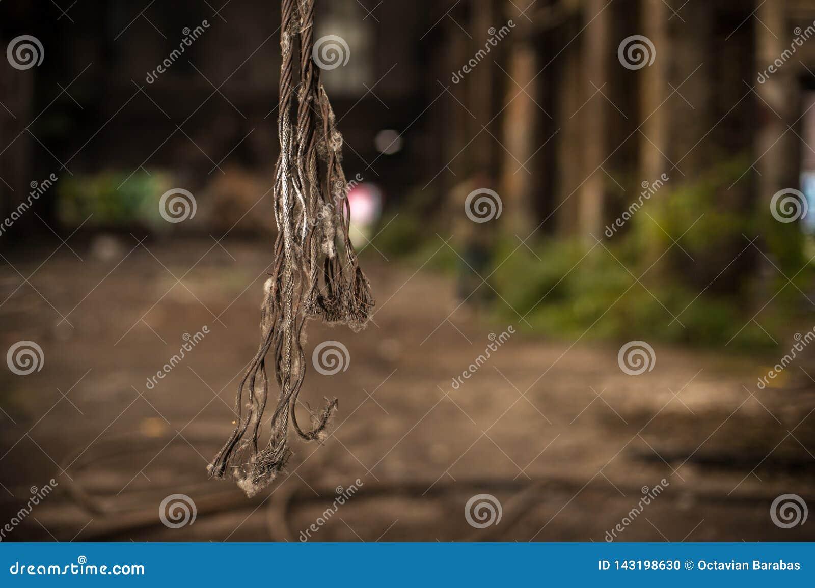 De kabels die van het besnoeiingsmetaal in de industriële bouw hangen
