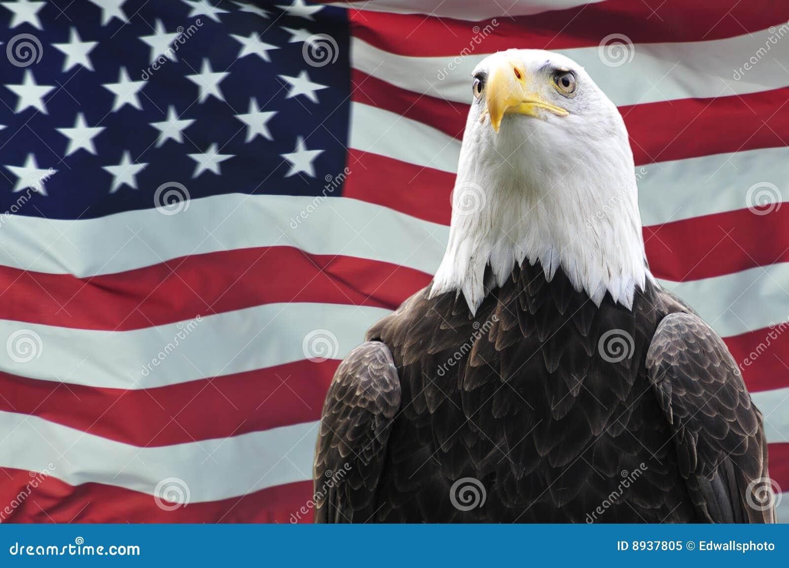 De kale vlag van de Adelaar en van de V.S.