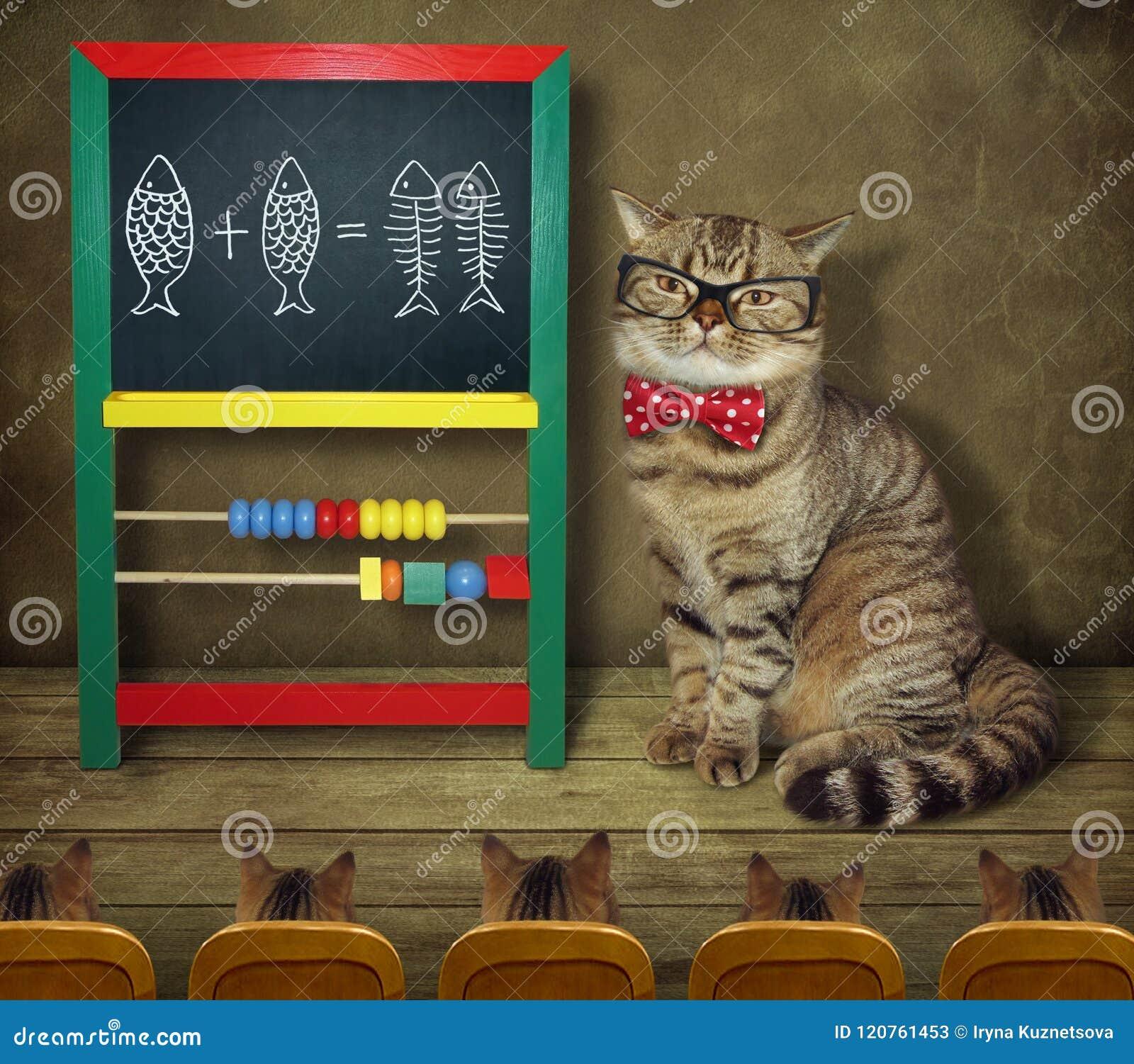 De kat in glazen onderwijst wiskunde