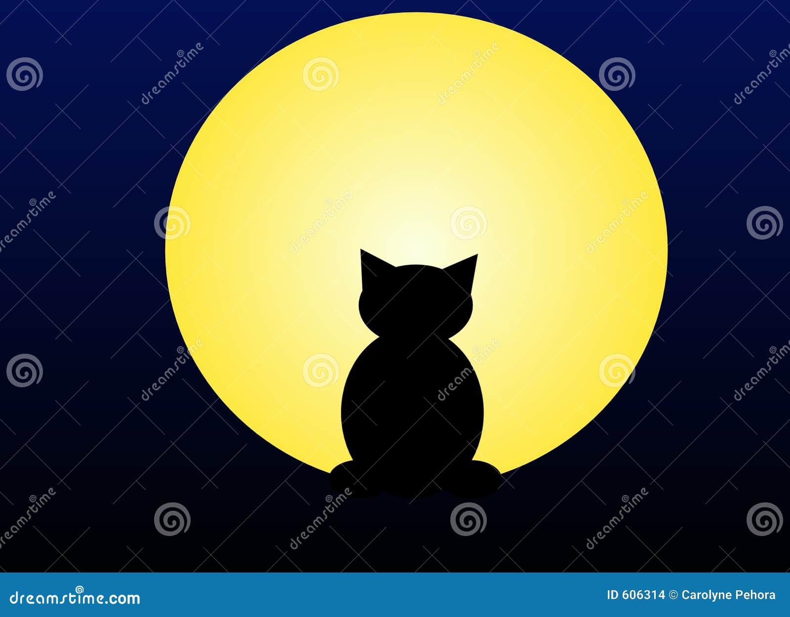De kat van het maanlicht