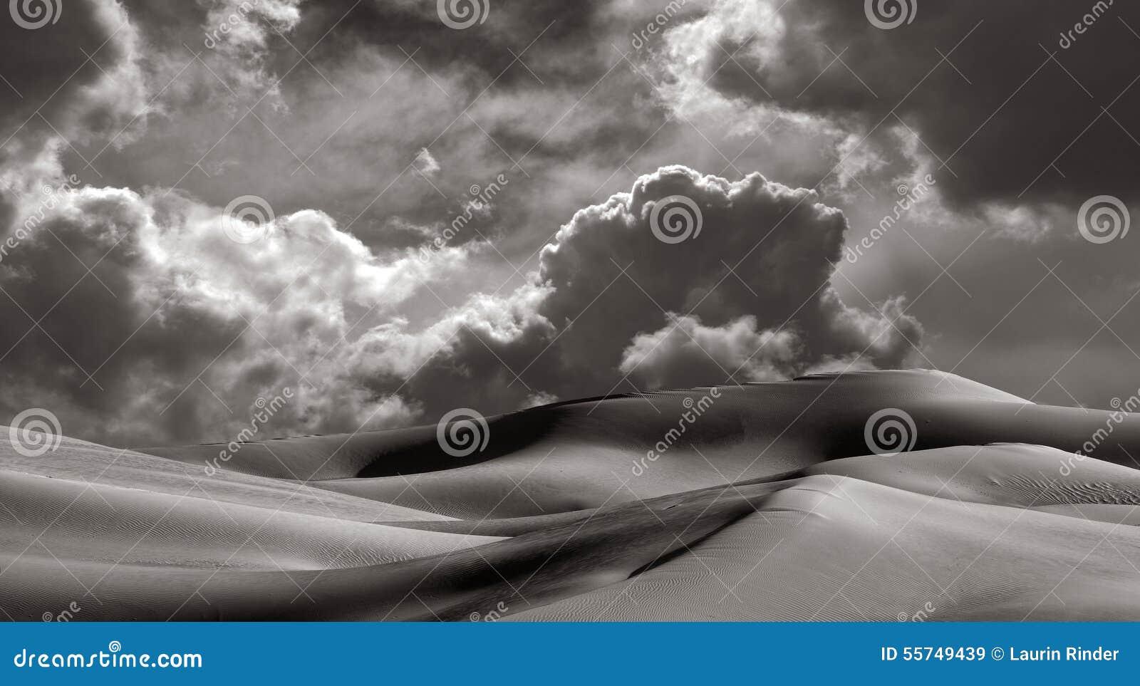 De keizer duinen van het Zand