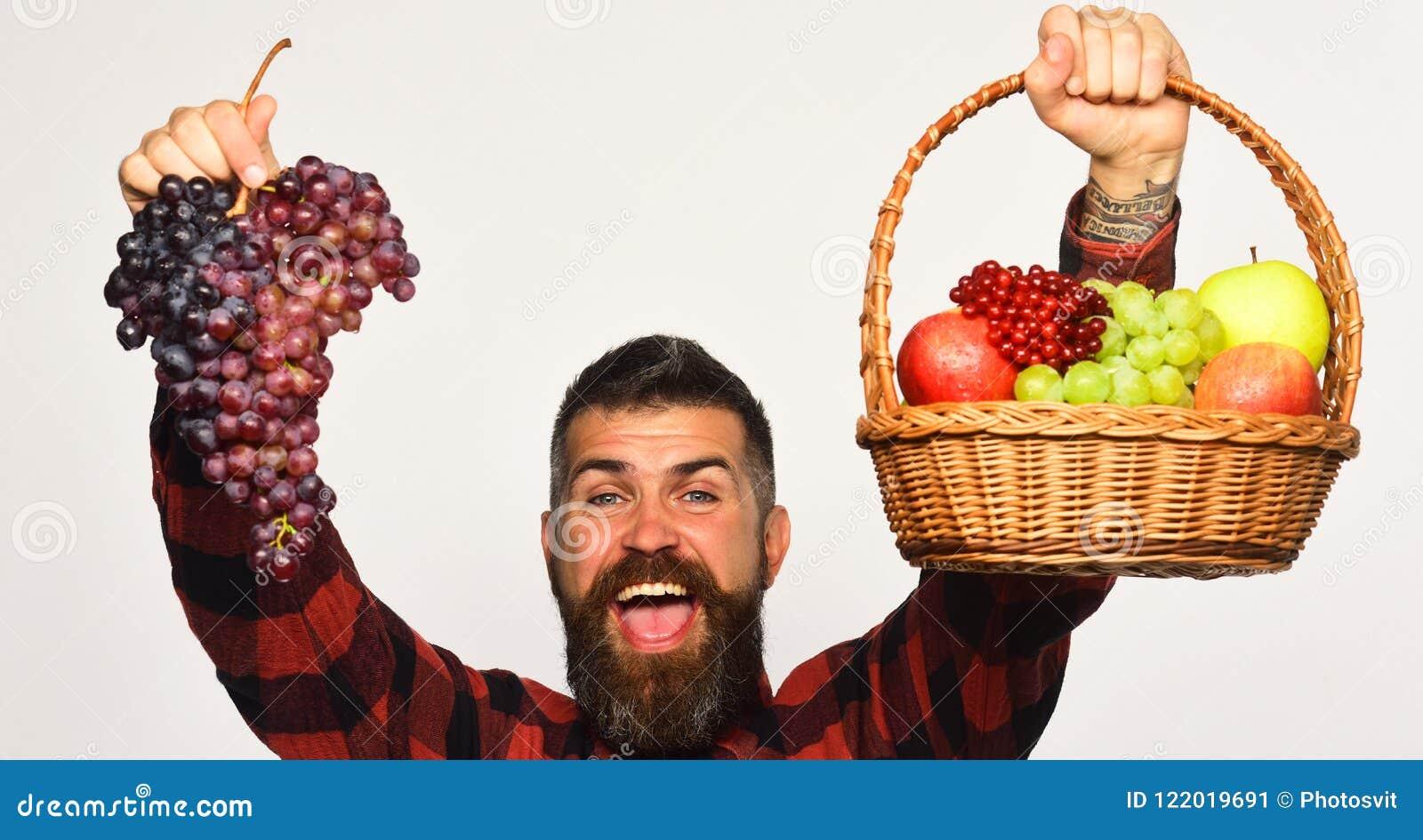 De kerel met de oogstmens met baard houdt mand met fruit