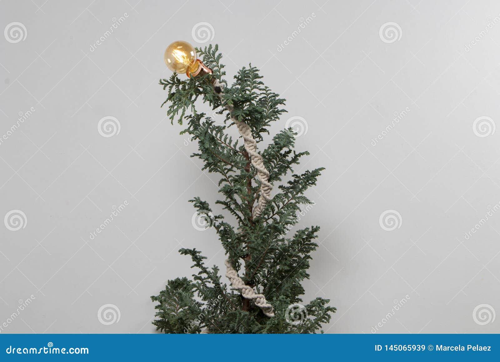 De kerstboom breit met macramé en gloeilampen witte achtergrond