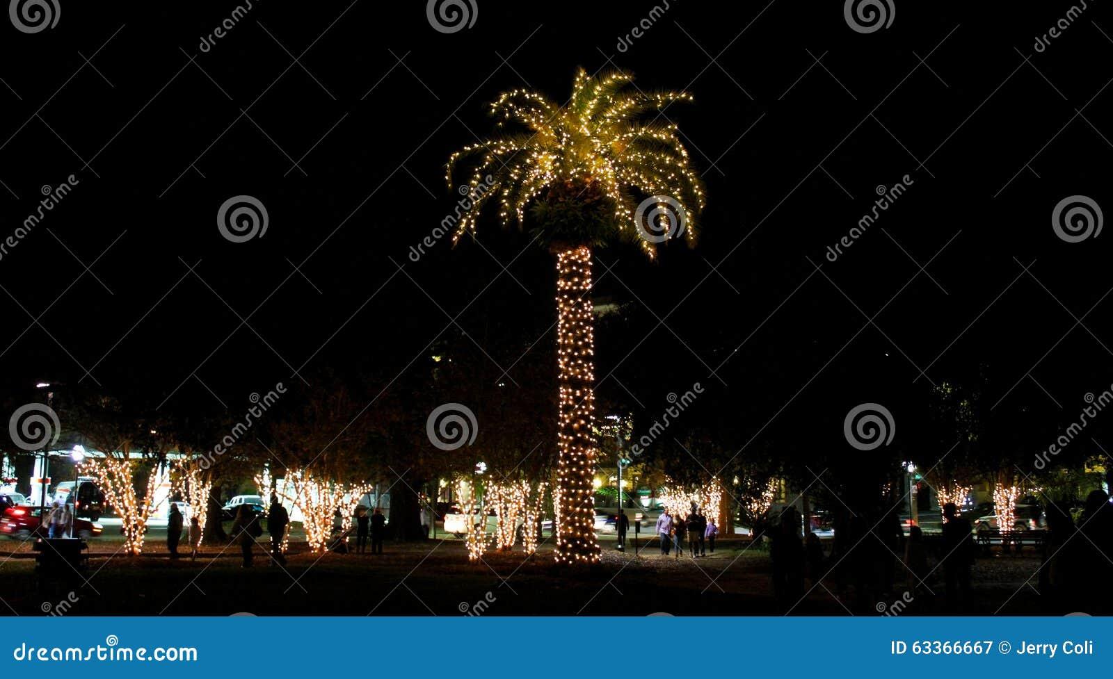 De Kerstmislichten verfraaien Marion Square in Charleston, Zuid-Carolina