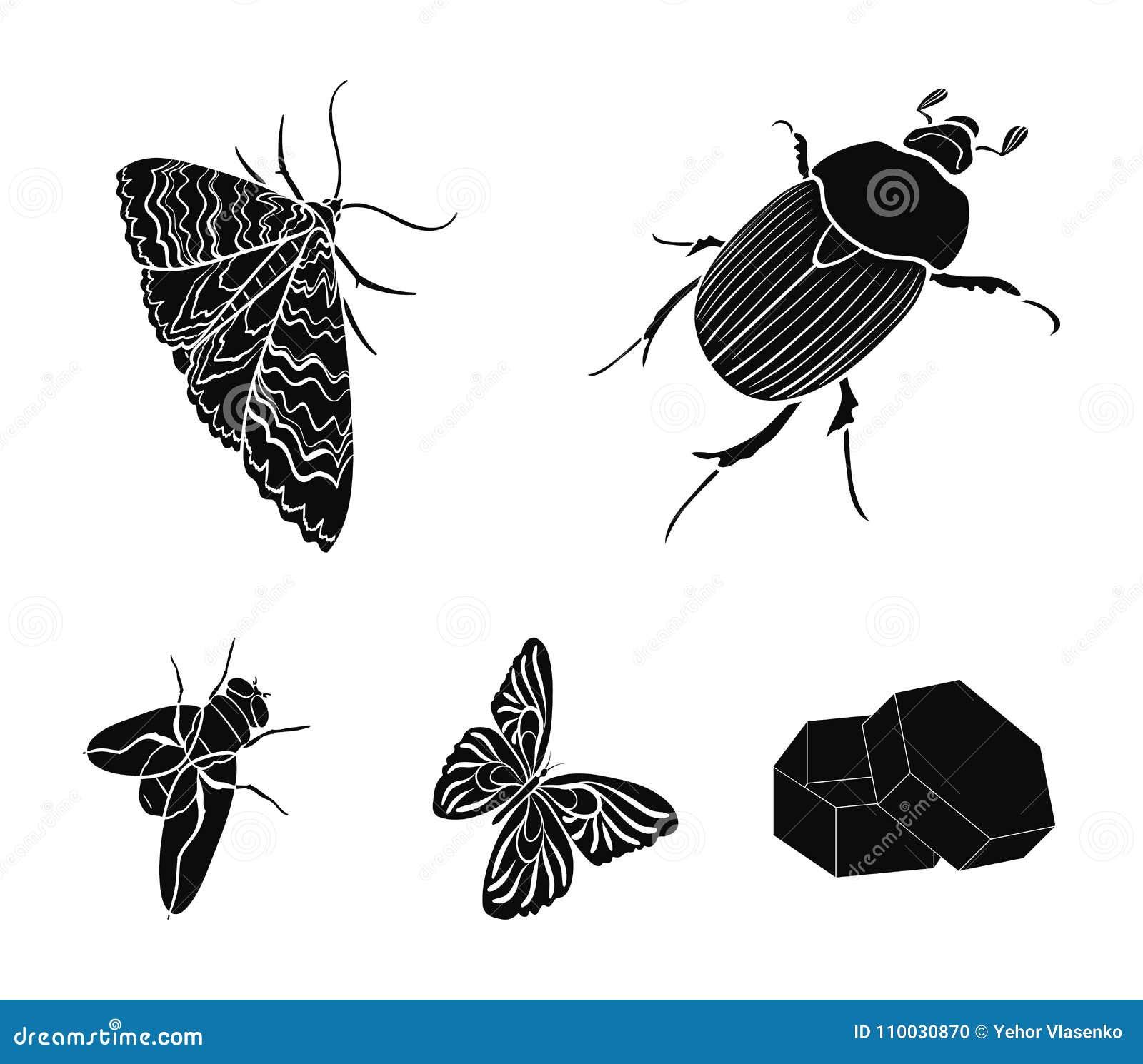 De kever van het geleedpotigeninsect, mot, vlinder, vlieg Insecten geplaatst inzamelingspictogrammen in de zwarte voorraad van he