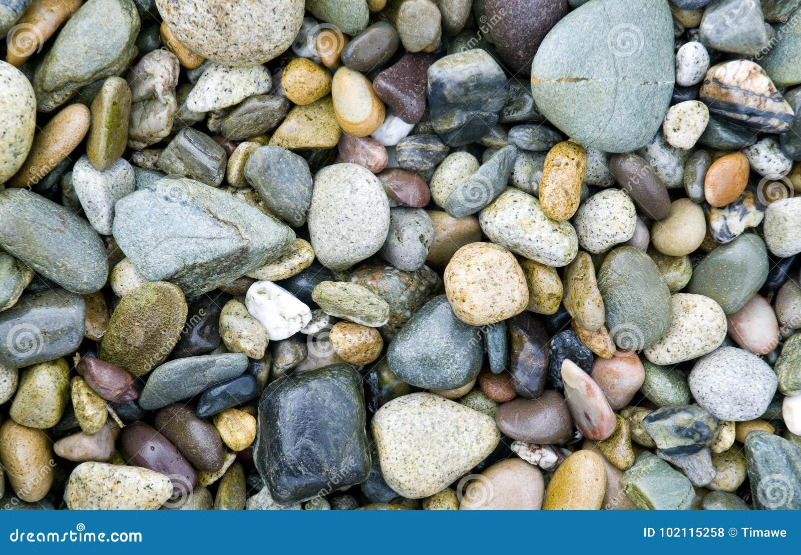 De kiezelstenen van het strand