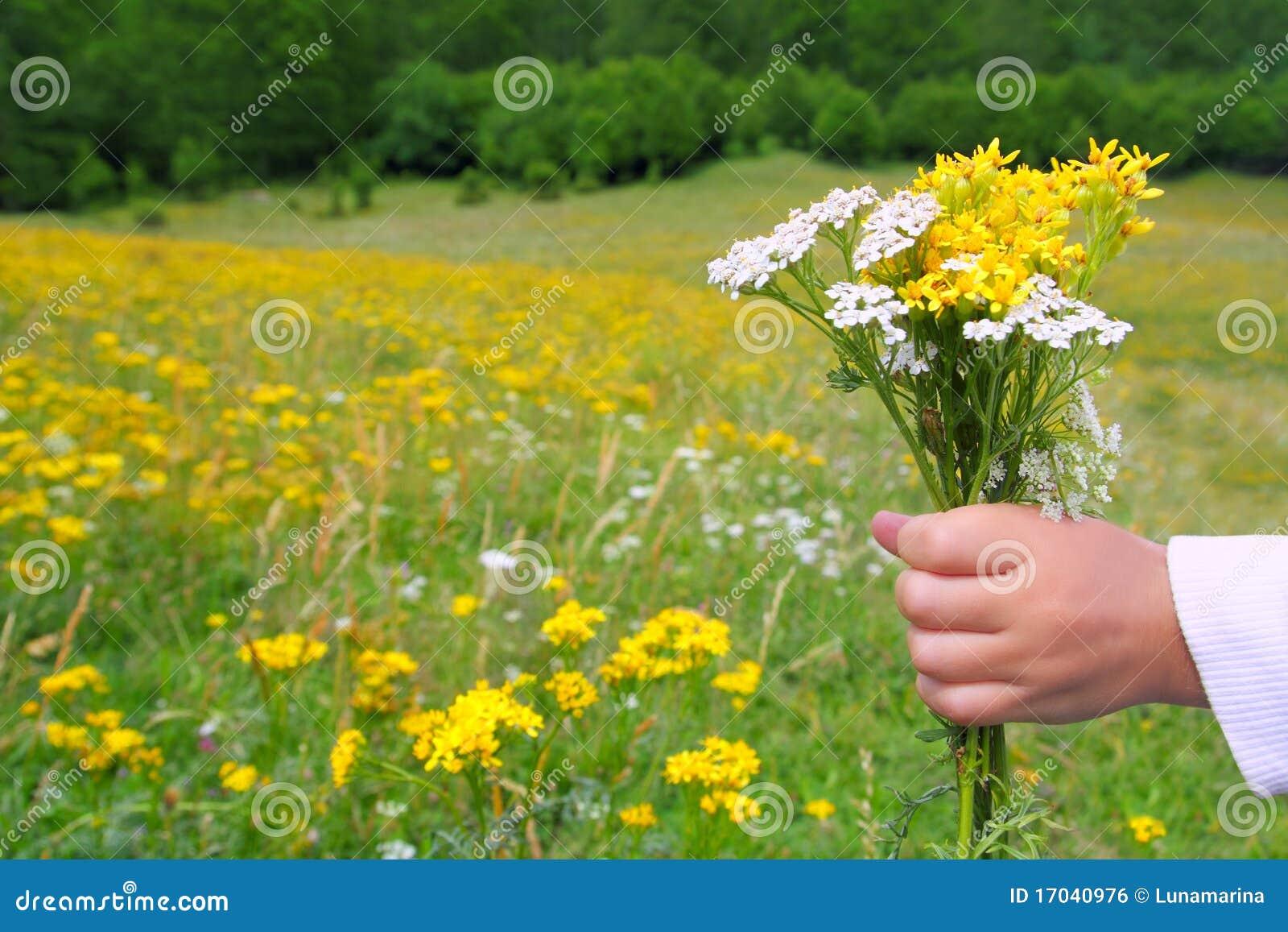 De kinderen overhandigen greepbloemen in de lenteweide