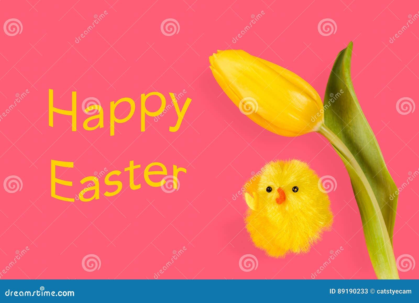 De kip en de tulp van Pasen op een roze achtergrond