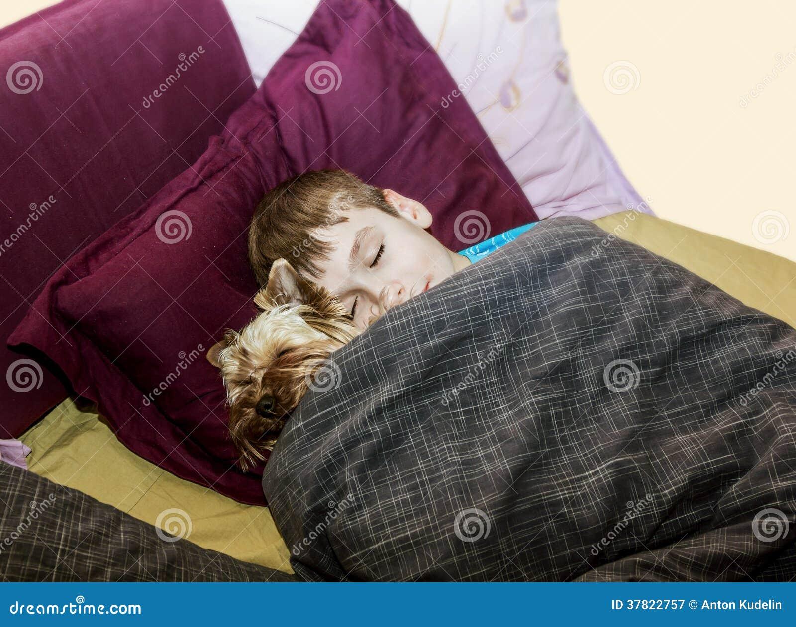 De kleine jongen slaapt in het bed met een kleine hond royalty vrije stock fotografie - Bed voor kleine jongen ...