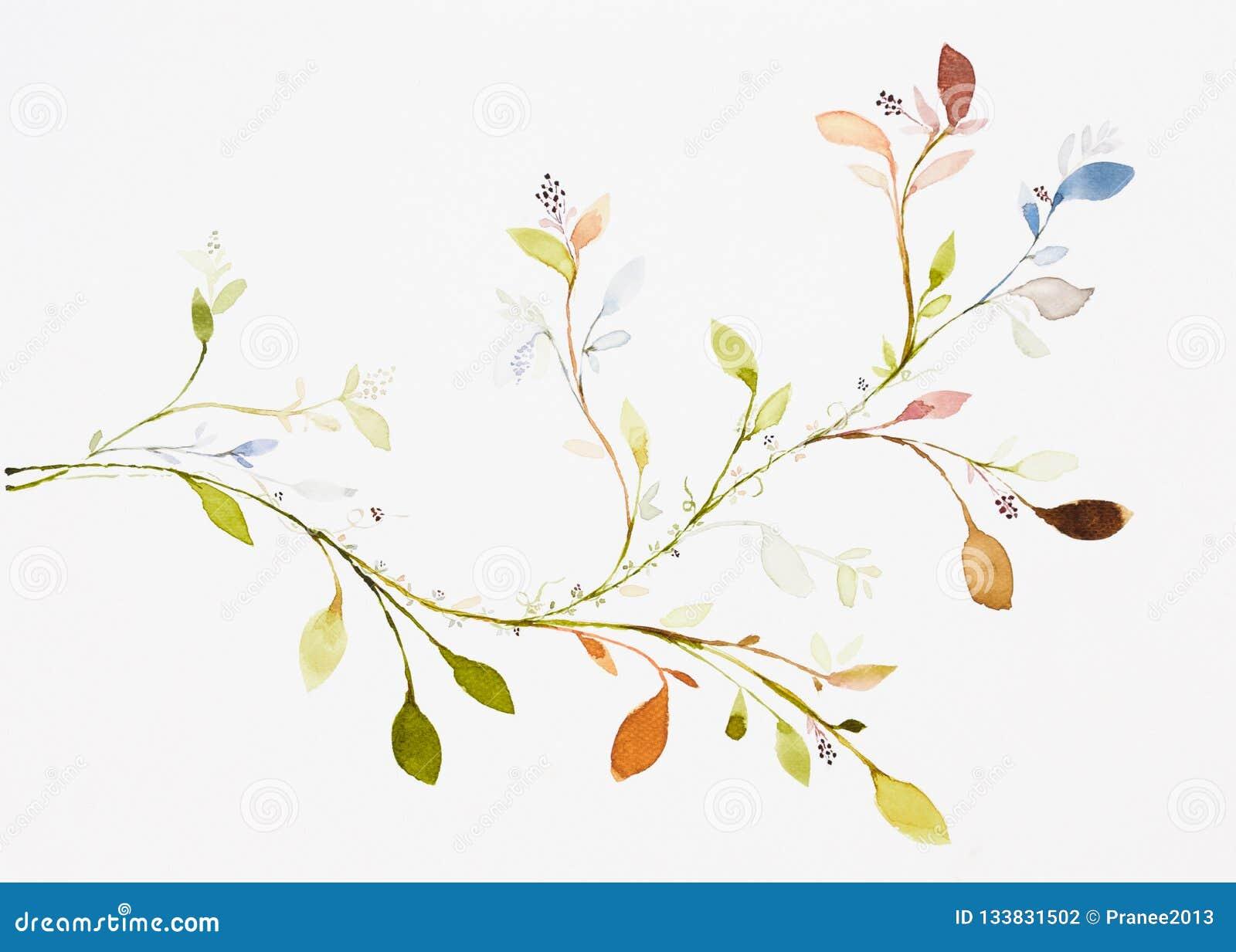 De kleur van het beeldwater, hand trekt, bladeren, takken, klimop