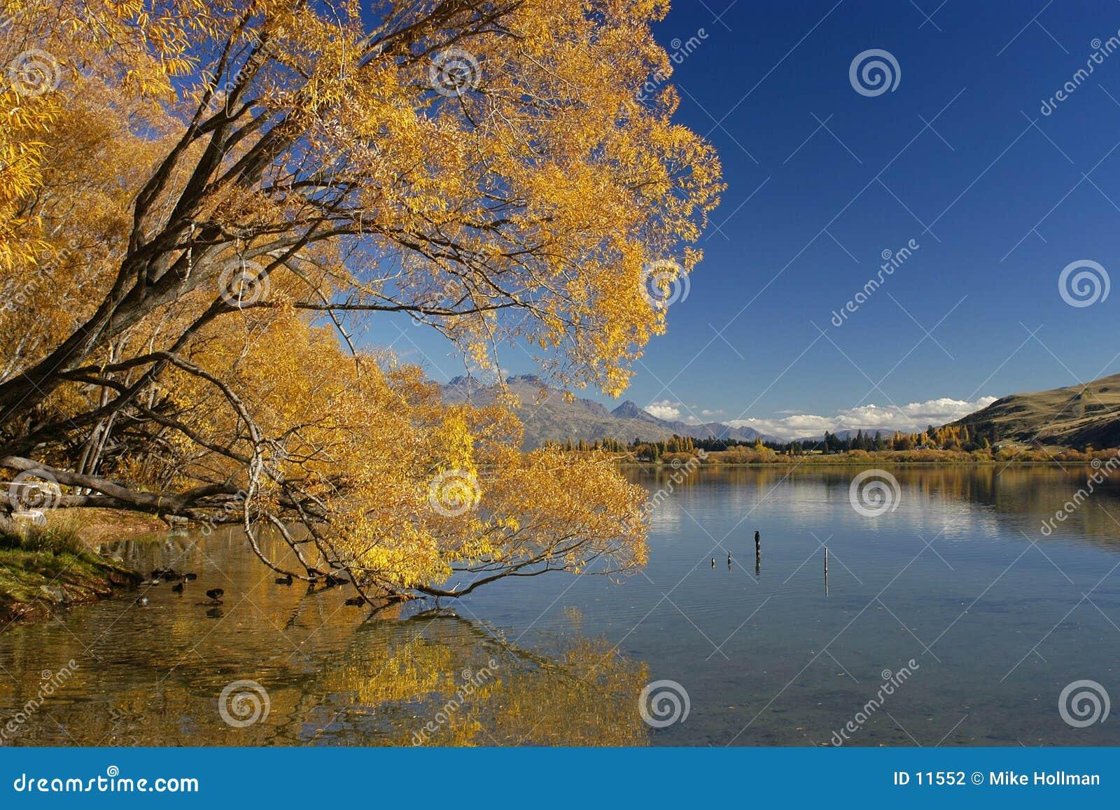 De Kleuren van de herfst