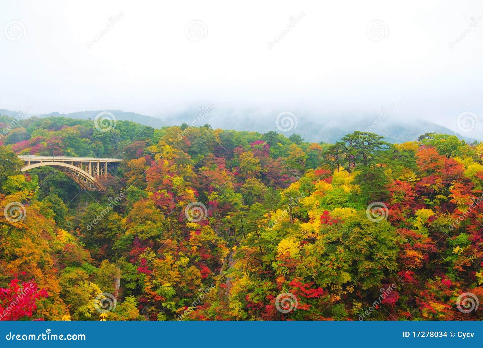 De Kleuren van de herfst van naruko-Kloof