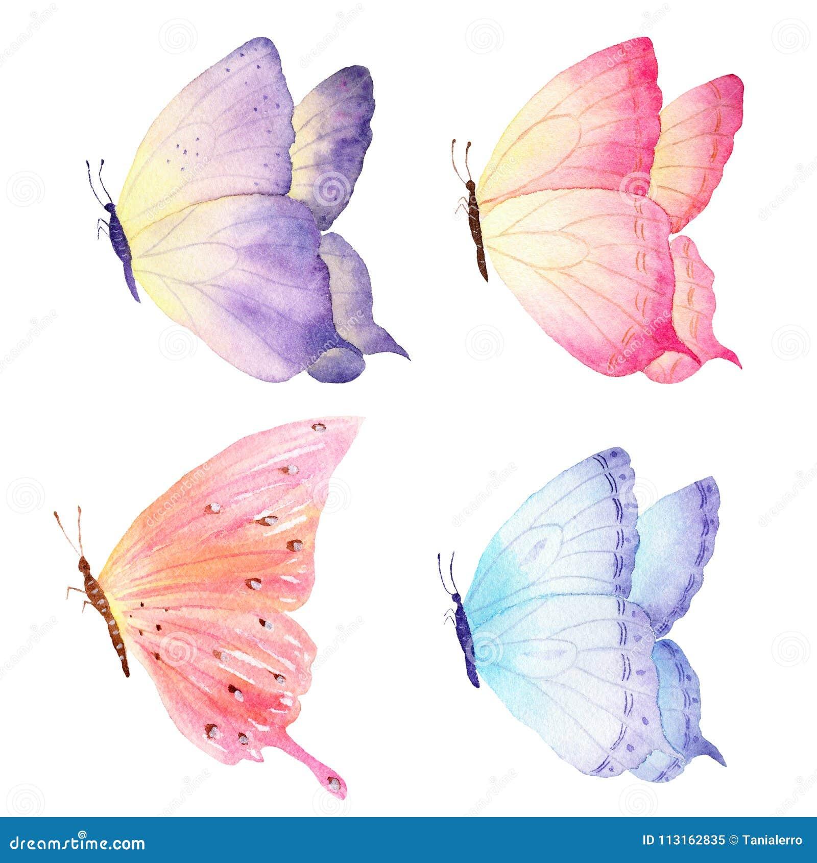 De kleurrijke hand getrokken inzameling van de waterverfvlinder Ideaal voor uitnodigingen, kaarten die, behang, op stof drukken