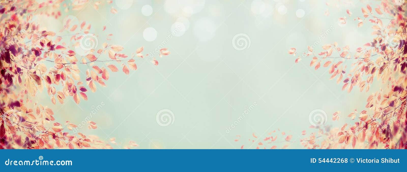 De kleurrijke tak van de de herfstboom met rode bladeren op lichtblauwe bokehachtergrond, banner