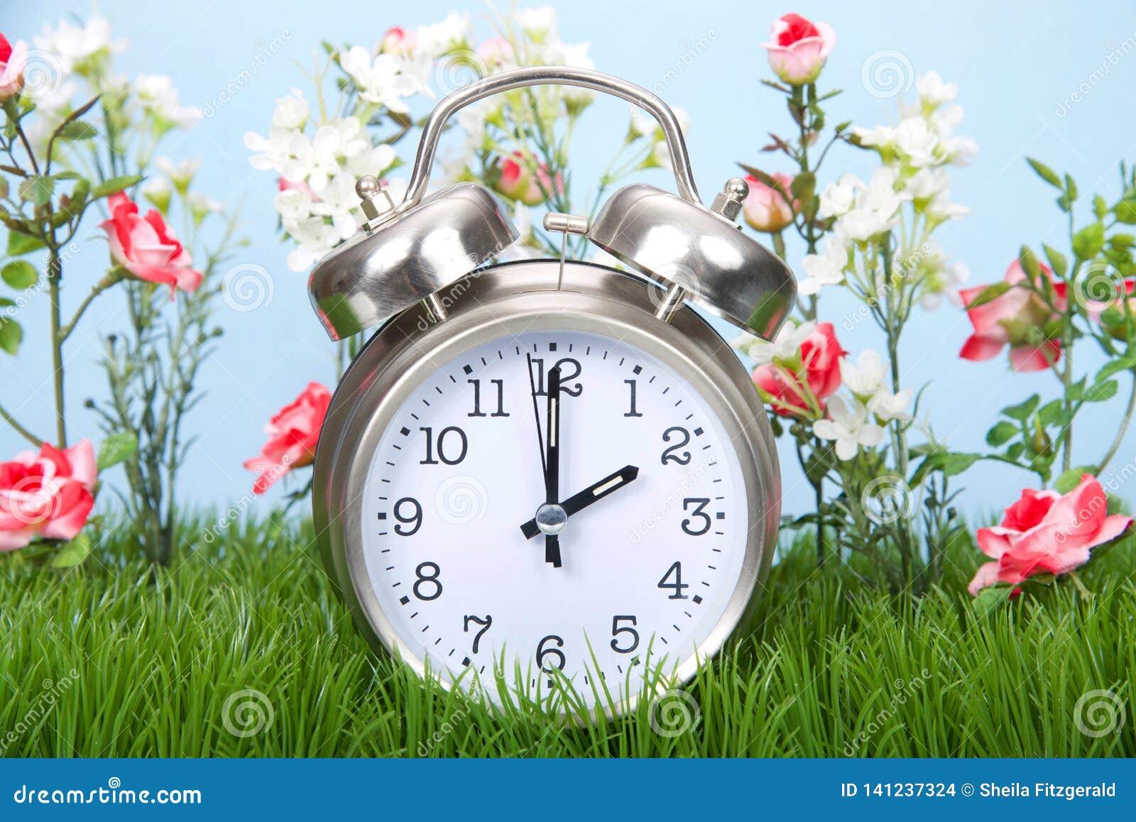 De klok van daglichtbesparingen in gras met forwards bloemen de lente