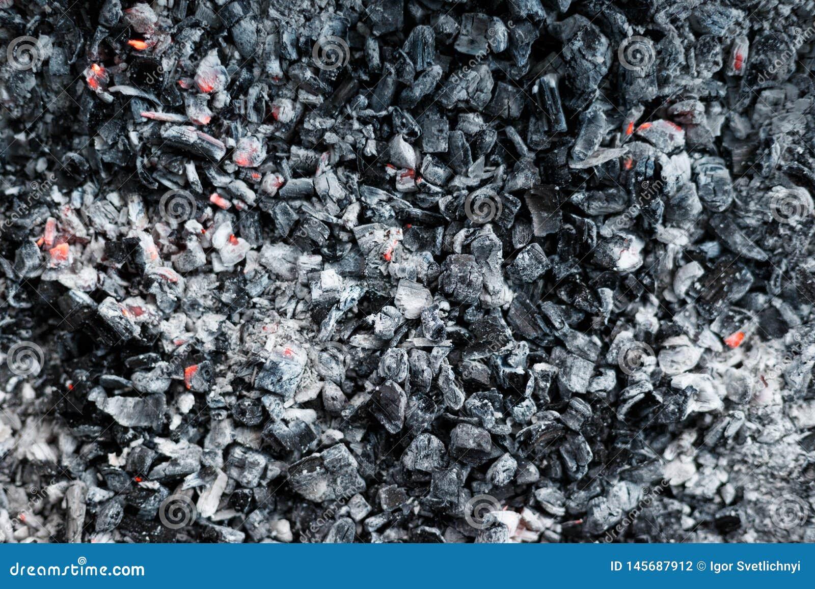 De koelsteenkolen van de grill