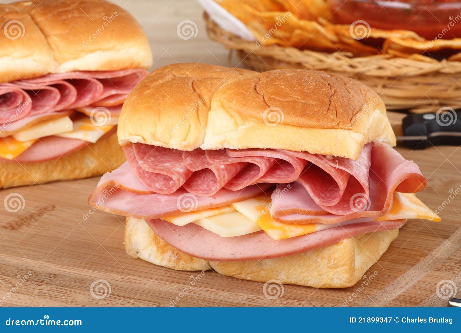 De koude Close-up van de Sandwich van de Besnoeiing