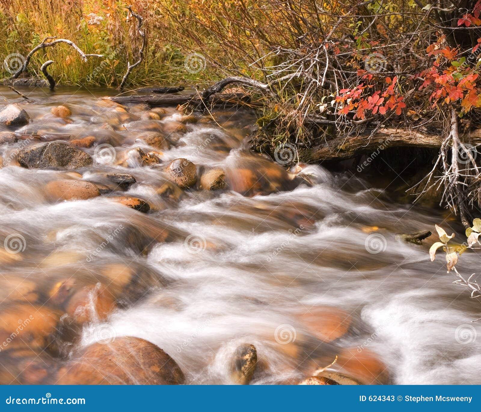 De kreek van de herfst
