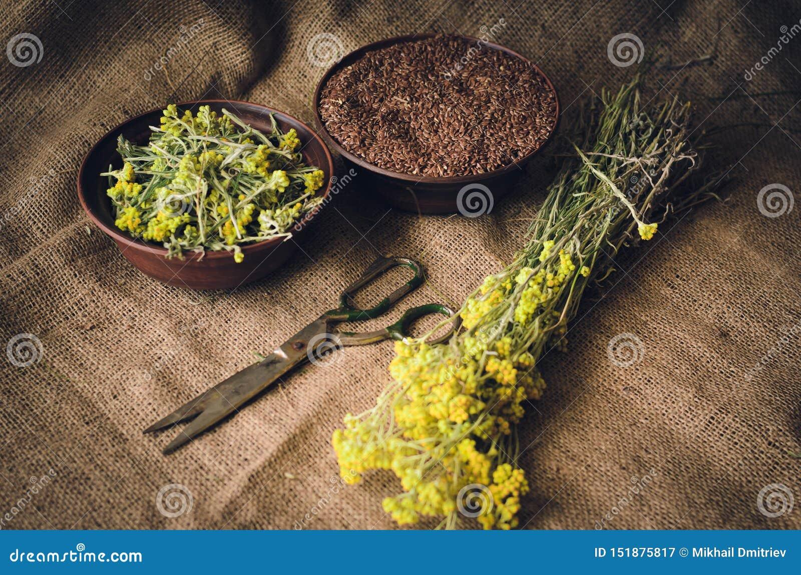 De kruiden en de zaden liggen op de lijst naast het notitieboekje en het houten telraam Uitstekende rustieke stijl Zachte nadruk