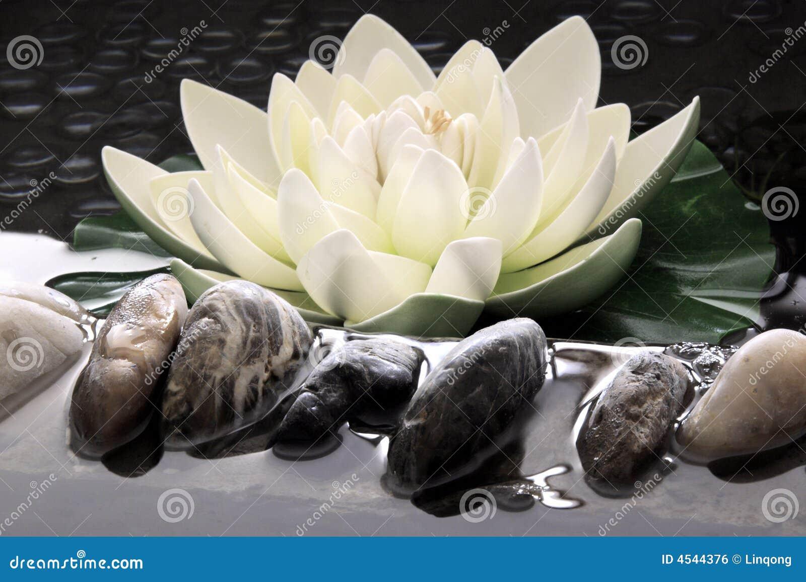De kunstmatige lotusbloem