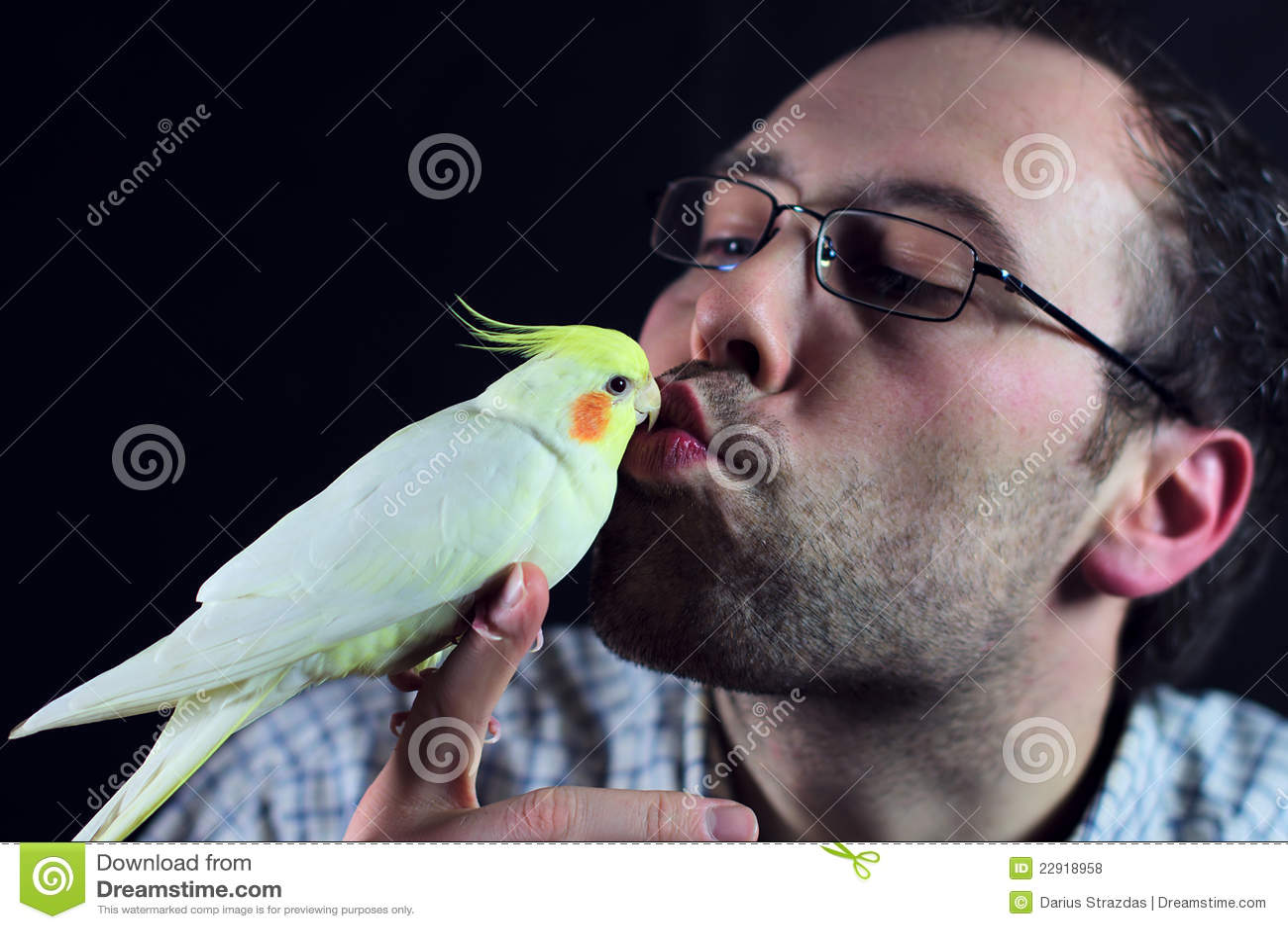 De kus van de vogel een mens