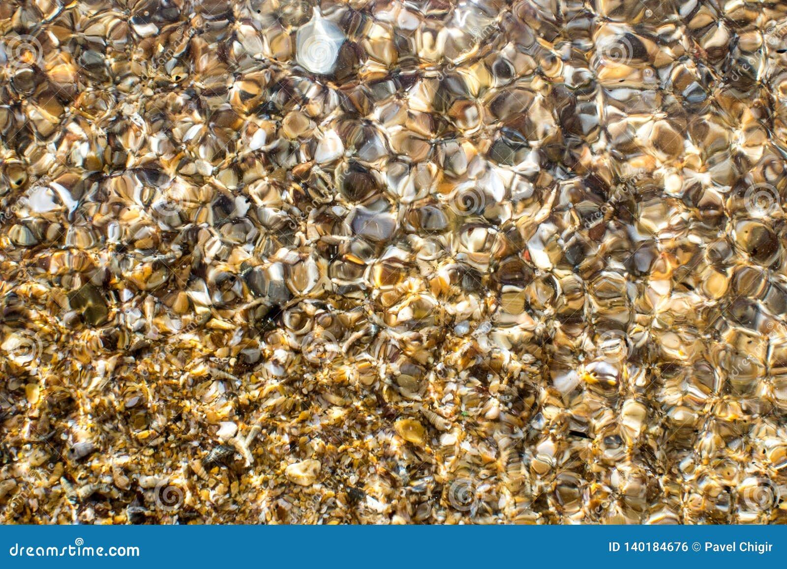 De kust van de Zwarte Zee met geel zand dat en kleine shells wordt uitgestrooid